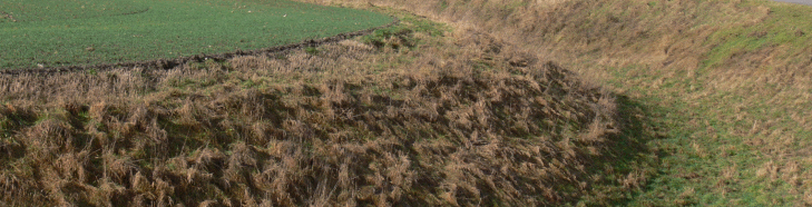 Enns fortress ditch